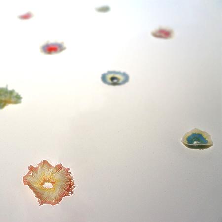 三澤遥さんの作品「紙の花」
